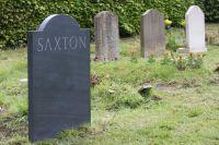 Saxton-back